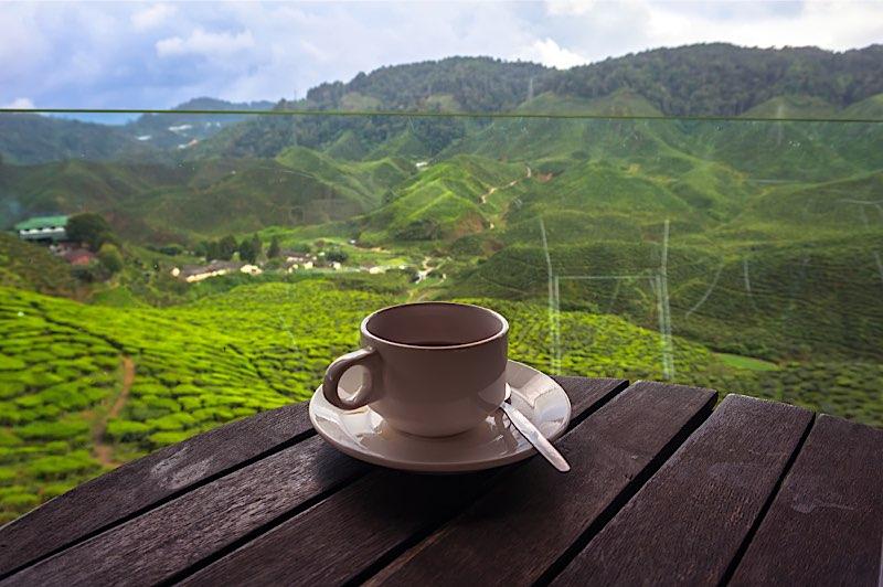 مقاصد شگفت انگیز برای عاشقان چای